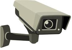 Видеокамеры для вил